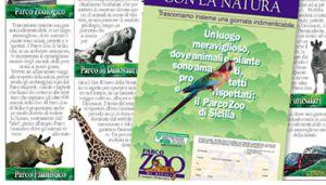 Zoo45
